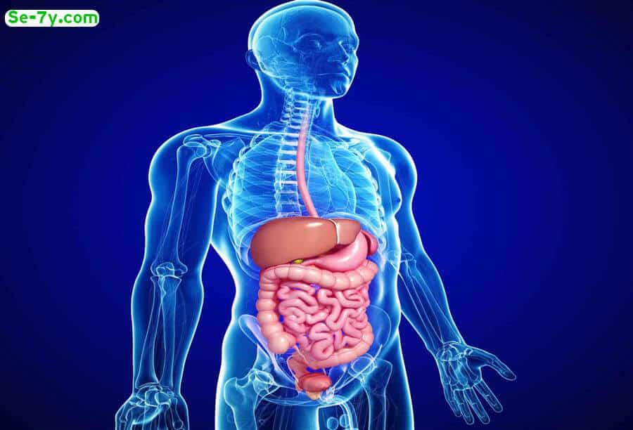 3 يؤدي الي حدوث اضطرابات في الجهاز الهضمي